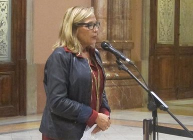 Ortega nega desobediència al TC i al·lega que Rajoy va treure validesa jurídica al 9N (EUROPA PRESS)