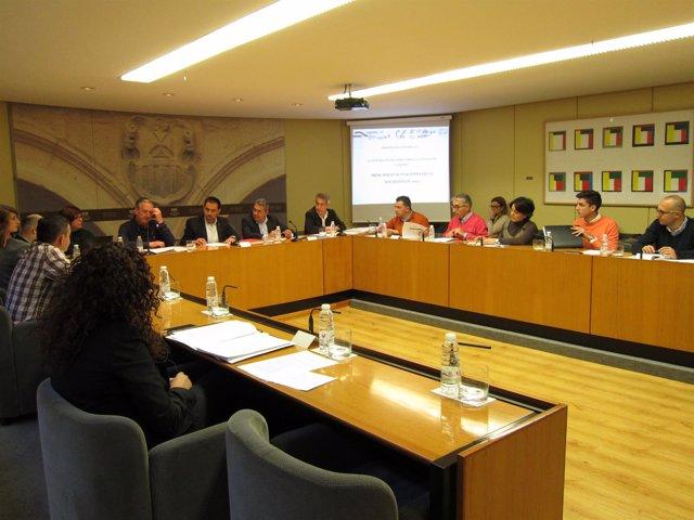Comisión Parlamento Soterramiento