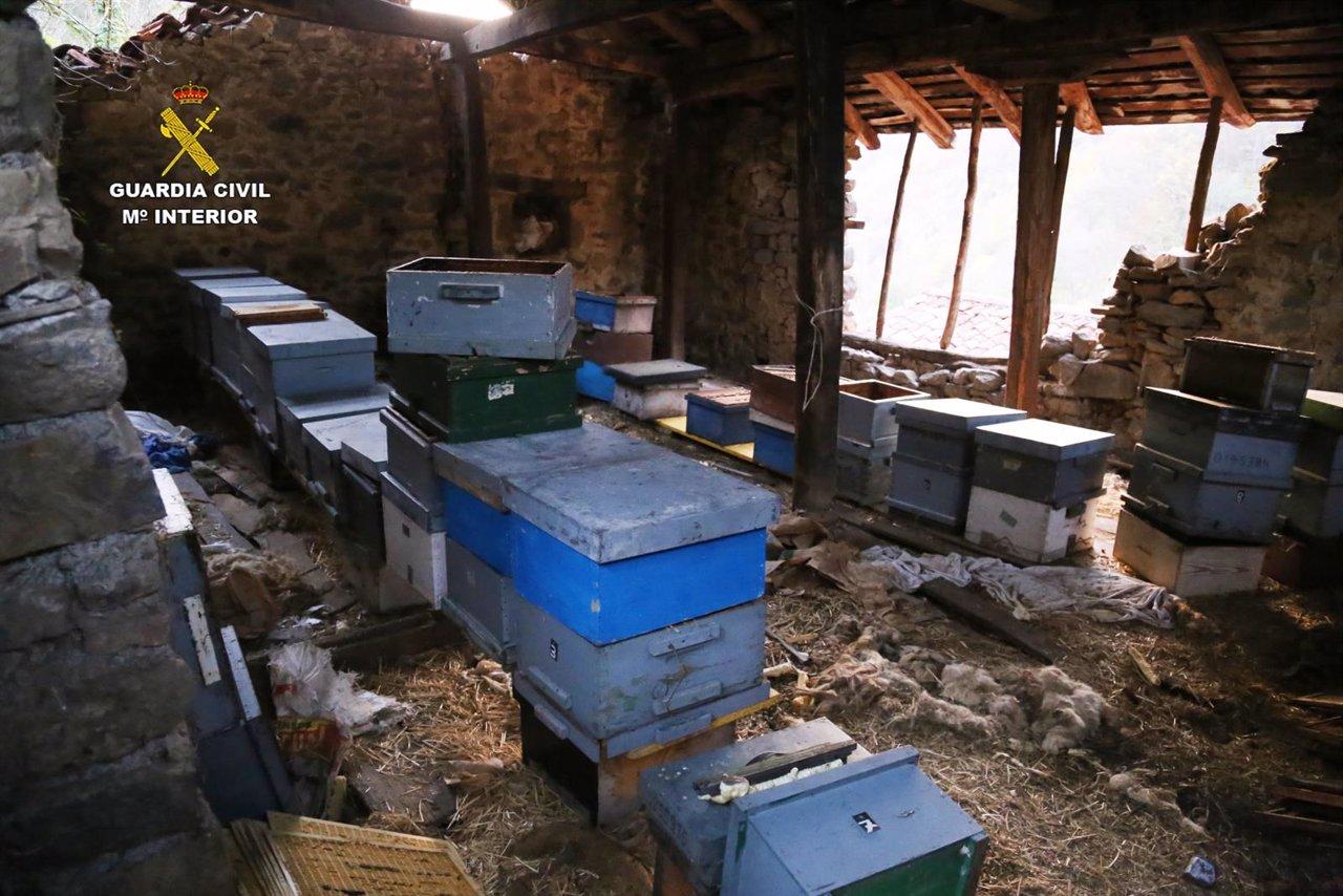 Dos detenidos por robos de colmenas que han supuesto pérdidas de más de 33.000 euros
