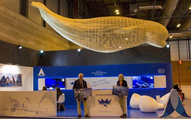Fitur el nuevo oceanogr fic de valencia aspira a for Oceanografic valencia precio 2016