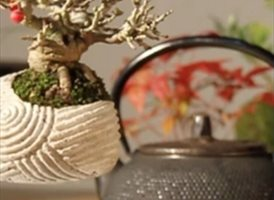 Air Bonsai: tecnología y tradición en un árbol flotante