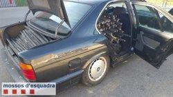 Dos detinguts per robar cable telefònic que amagaven sota un arbre a Torrebesses (MOSSOS D'ESQUADRA)