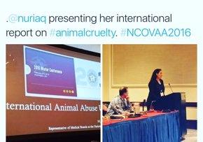 Foto: COMUNICADO: FBI y Sheriffs analizan en Washington el maltrato animal como delito contra la sociedad (MALTRATO A ANIMALES )