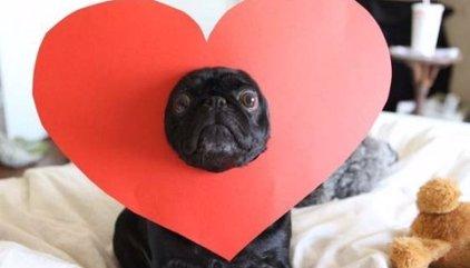 20 felicitaciones originales de San Valentín 2016 para enviar por WhatsApp