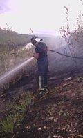 El fuego arrasa 1.201 hectáreas el primer trimestre de 2016, un 71,66% menos que en 2015