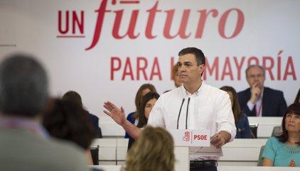 """Sánchez demana """"unitat i confiança"""" al PSOE en les pròximes setmanes per guanyar el PP"""