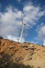 ONG ambientales piden al nuevo Gobierno acelerar el paso para una energía 100% renovable
