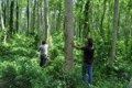 BioCarbon Engineering, una start-up que quiere plantar 1.000 millones de árboles en un año utilizando drones