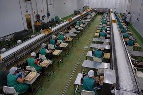 Foto: España, a la cola de la UE en empleo femenino (EUROPA PRESS/CONSERVAS CONCEPCIÓN)
