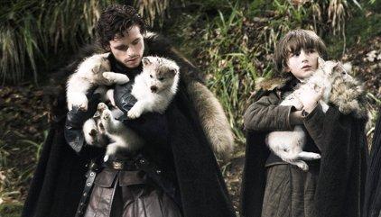 Juego de tronos: ¿Cuántos lobos huargos de los Stark quedan vivos?
