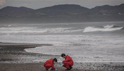 La crisis ecológica de la isla chilena de Chiloé
