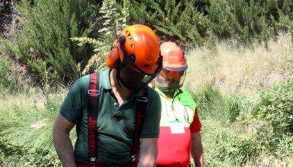 Més de 90 professionals d'arreu d'Europa debaten a Solsona com millorar la professionalització del sector forestal