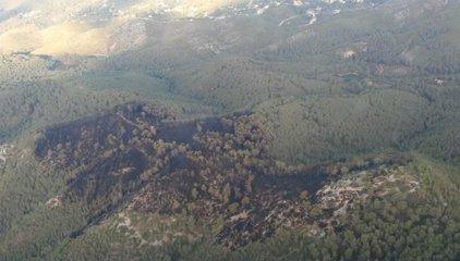 Successos.- Estabilitzat l'incendi forestal d'Olivella (Barcelona)