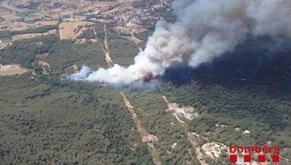 Els Bombers treballen en un incendi forestal a Blanes