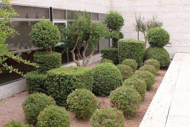 Foto: Convocado el I Concurso de Jardines y Huertos para mayores (EUROPA PRESS/JCCM)