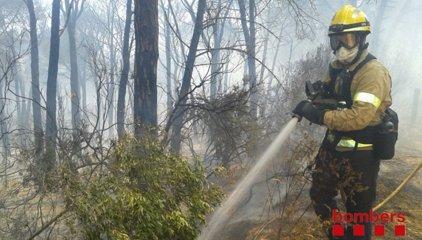 L'incendi de Blanes ha cremat 30 hectàrees i ha obligat a desallotjar urbanitzacions