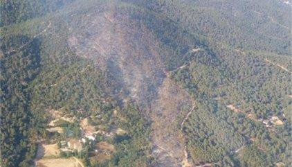 Successos.- Estabilitzat l'incendi de Blanes (Girona), que ha cremat 22,4 hectàrees