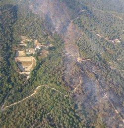 27 dotacions de bombers remullen durant la nit l'incendi de Blanes (BOMBERS DE LA GENERALITAT)