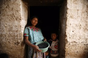 Foto: Las guatemaltecas son las mujeres más bajas del mundo (REUTERS/DANIEL LECLAIR)