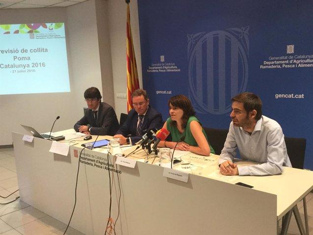 Foto: La falta de frío en el invierno reduce la cosecha de pera un 8% en Catalunya (GENCAT)