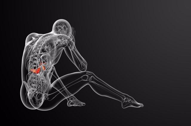 Una nueva terapia mata las células de cáncer de páncreas
