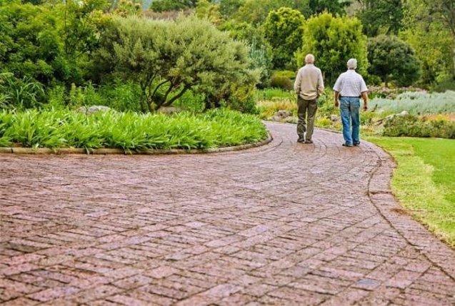 Foto: COMUNICADO: Los centros de día, espacios para el bienestar de los mayores (GRUPO ORPEA)