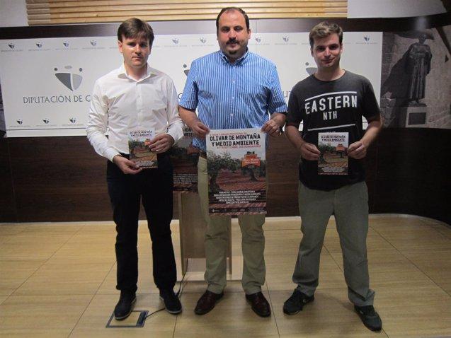 Foto: La IV Feria del Olivar de Montaña impulsará la IGP de la aceituna 'Manzanilla cacereña' y reivindica ayudas (EUROPA PRESS)