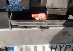 Rescatada a Ceuta una immigrant en el maleter d'un turisme (EUROPA PRESS/ DIRECCIÓN GENERAL DE LA POLICÍA)