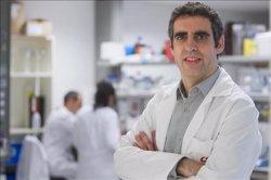 Un nou test epigenètic permet identificar tumors d'origen desconegut (IDIBELL)