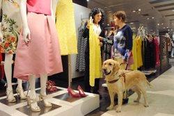 C's de Barcelona reitera la necessitat d'una campanya de sensibilització sobre els gossos guia (FUNDACIÓN ONCE)