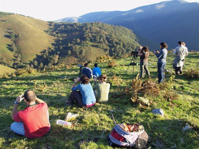 Foto: Naturea Cantabria abre el plazo de reserva para actividades de la berrea (NATUREA CANTABRIA)