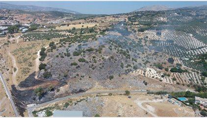 Declarado un incendio forestal en un paraje de Cabra (Córdoba)
