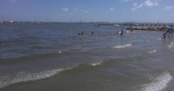 Una bióloga alerta de que la contaminación del Mar Menor está llegando al...