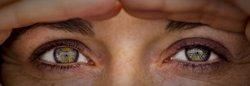 L'ONCE col·labora en una investigació per prevenir la retinosi pigmentària (FLICKR)