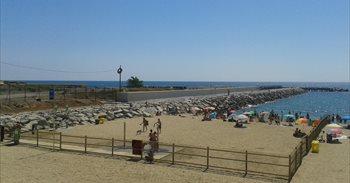 Barcelona retira la playa de perros tras una prueba piloto positiva con...