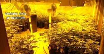Desmantelado un laboratorio de marihuana en Yeles