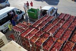 El Govern crearà un grup de treball per impulsar el comerç de fruita d'os a la Xina (EUROPA PRESS/BANCO DE ALIMENTOS)