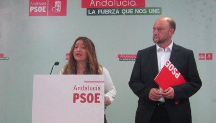 """Verónica Pérez pide """"sentido común"""" para terminar con el """"espectáculo bochornoso"""" en el PSOE"""