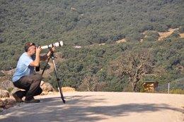Observación de aves. Turismo. Naturaleza