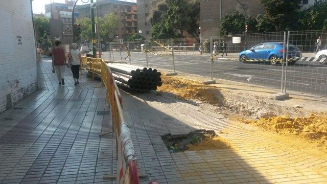 Árboles talados en la Ronda de Capuchinos de Sevilla