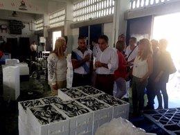 Visita de Bendodo, Mula y Carmona a las instalaciones de la lonja de Fuengirola.