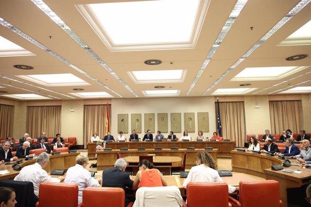 Javier Fernández preside la reunión del grupo socialista en el Congreso