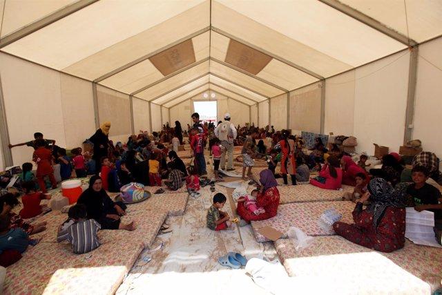 Campamento de desplazados iraquíes cerca de Mosul