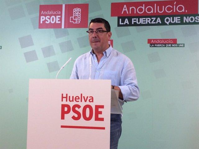 Manuel Domínguez Limón