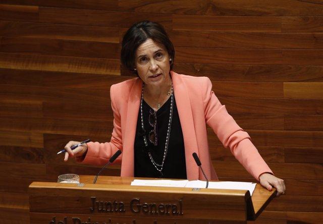 Dolores Carcedo en el pleno de la Junta.