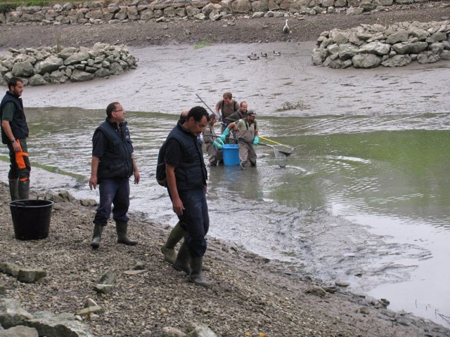 Limpieza del lago de Mendillorri