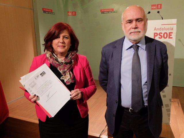 Elvira Ramón y Gregorio Cámara