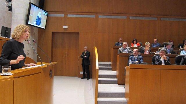 Patricia Luquin (IU), interviniendo en el Debate sobre el Estado de la Comunidad