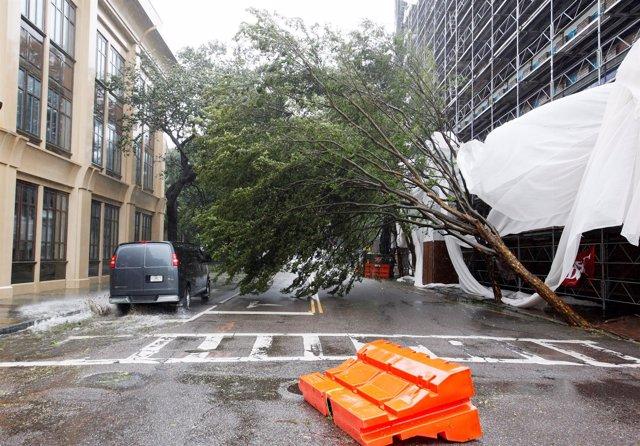 Daños causados por el huracán 'Matthew'