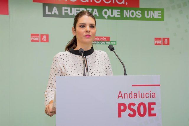 La parlamentaria del PSOE Noemí Cruz